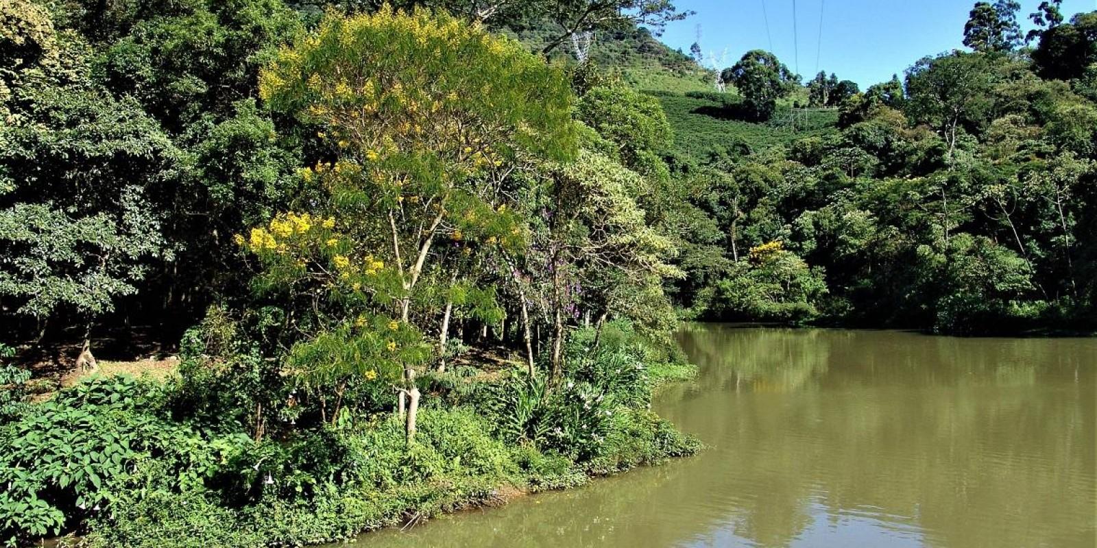 Emater-MG realiza ações de proteção ambiental e preservação da água